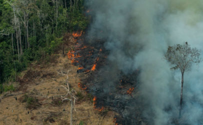 El fuego en la Amazonía amenaza las comunidades indígenas, la biodiversidad y el clima del planeta