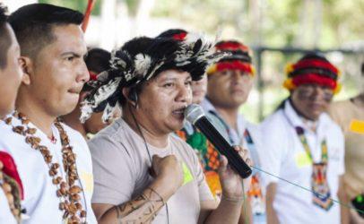 COVID-19: Una amenaza más para la Amazonía