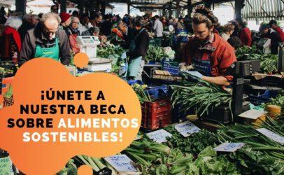 Beca para periodistas de Bolivia sobre alimentos sustentables