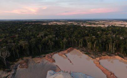 Consulta pública al informe del Panel Científico por el Amazonas